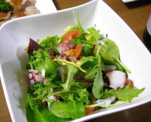Salad_22090213_convert_200902132149